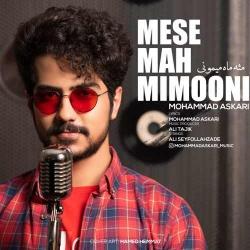 دانلود آهنگ سنتی مثه ماه میمونی از محمد عسکری