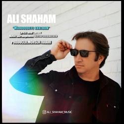 دانلود آهنگ سنتی محبوبه ی قلبم از علی شهام