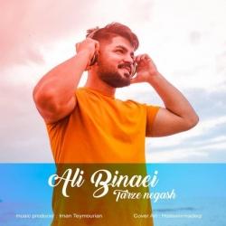 دانلود آهنگ سنتی طرز نگات از علی بینایی
