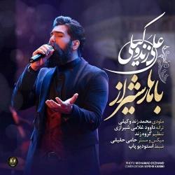 دانلود آهنگ سنتی باهار شیراز از علی زند وکیلی